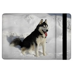 Siberian Husky Sitting in snow iPad Air Flip