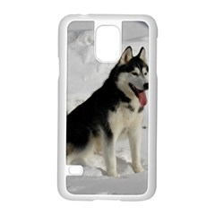 Siberian Husky Sitting in snow Samsung Galaxy S5 Case (White)