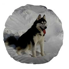 Siberian Husky Sitting in snow Large 18  Premium Flano Round Cushions