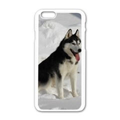 Siberian Husky Sitting in snow Apple iPhone 6/6S White Enamel Case
