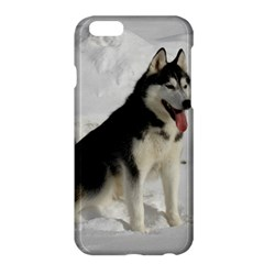 Siberian Husky Sitting in snow Apple iPhone 6 Plus/6S Plus Hardshell Case
