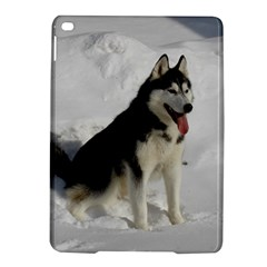 Siberian Husky Sitting in snow iPad Air 2 Hardshell Cases