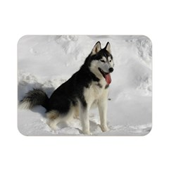 Siberian Husky Sitting in snow Double Sided Flano Blanket (Mini)