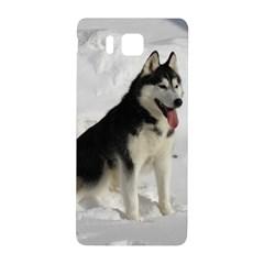 Siberian Husky Sitting in snow Samsung Galaxy Alpha Hardshell Back Case