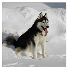 Siberian Husky Sitting in snow Large Satin Scarf (Square)