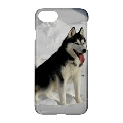 Siberian Husky Sitting in snow Apple iPhone 7 Hardshell Case