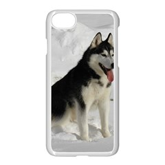 Siberian Husky Sitting in snow Apple iPhone 7 Seamless Case (White)
