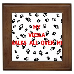 My Vizsla Walks On Me  Framed Tiles