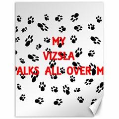 My Vizsla Walks On Me  Canvas 12  x 16