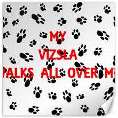 My Vizsla Walks On Me  Canvas 16  x 16
