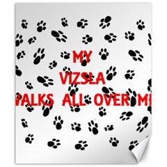 My Vizsla Walks On Me  Canvas 20  x 24