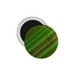 Stripes Course Texture Background 1.75  Magnets