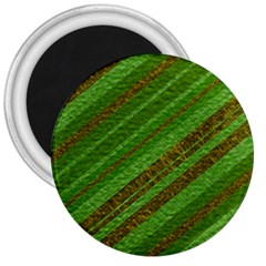 Stripes Course Texture Background 3  Magnets