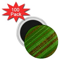 Stripes Course Texture Background 1.75  Magnets (100 pack)