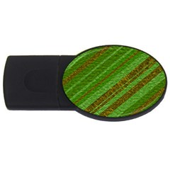 Stripes Course Texture Background USB Flash Drive Oval (1 GB)