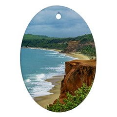 Aerial Seascape Scene Pipa Brazil Oval Ornament (Two Sides)