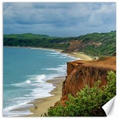 Aerial Seascape Scene Pipa Brazil Canvas 12  x 12