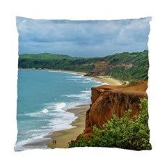 Aerial Seascape Scene Pipa Brazil Standard Cushion Case (One Side)
