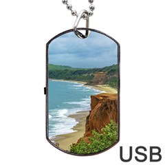 Aerial Seascape Scene Pipa Brazil Dog Tag USB Flash (Two Sides)