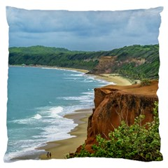 Aerial Seascape Scene Pipa Brazil Large Cushion Case (Two Sides)