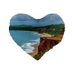 Aerial Seascape Scene Pipa Brazil Standard 16  Premium Flano Heart Shape Cushions