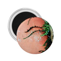 Background Stone Wall Pink Tree 2.25  Magnets