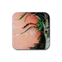 Background Stone Wall Pink Tree Rubber Square Coaster (4 pack)