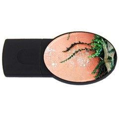 Background Stone Wall Pink Tree USB Flash Drive Oval (1 GB)