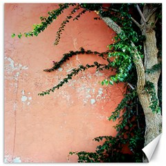 Background Stone Wall Pink Tree Canvas 12  x 12