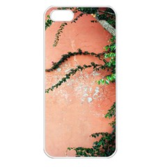 Background Stone Wall Pink Tree Apple iPhone 5 Seamless Case (White)