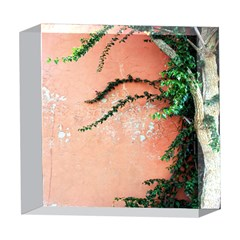 Background Stone Wall Pink Tree 5  x 5  Acrylic Photo Blocks