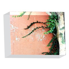 Background Stone Wall Pink Tree 5 x 7  Acrylic Photo Blocks