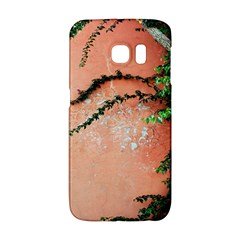 Background Stone Wall Pink Tree Galaxy S6 Edge