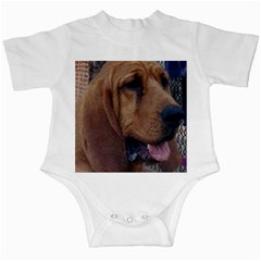 Bloodhound  Infant Creepers