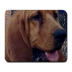 Bloodhound  Large Mousepads