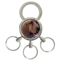 Bloodhound  3-Ring Key Chains