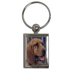 Bloodhound  Key Chains (Rectangle)