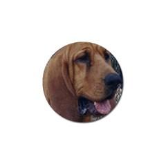 Bloodhound  Golf Ball Marker (4 pack)