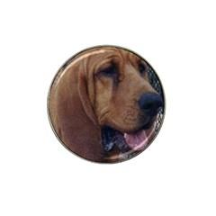 Bloodhound  Hat Clip Ball Marker