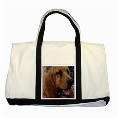 Bloodhound  Two Tone Tote Bag