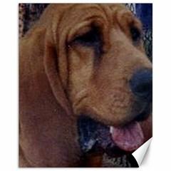 Bloodhound  Canvas 11  x 14