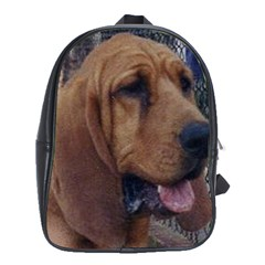 Bloodhound  School Bags(Large)
