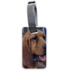 Bloodhound  Luggage Tags (One Side)