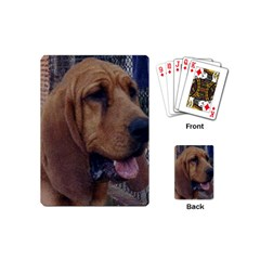 Bloodhound  Playing Cards (Mini)