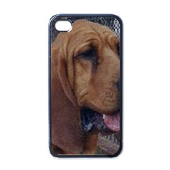 Bloodhound  Apple iPhone 4 Case (Black)