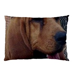 Bloodhound  Pillow Case (Two Sides)