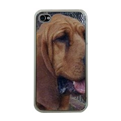 Bloodhound  Apple iPhone 4 Case (Clear)