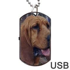 Bloodhound  Dog Tag USB Flash (One Side)