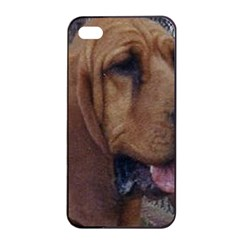 Bloodhound  Apple iPhone 4/4s Seamless Case (Black)