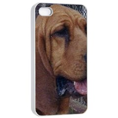 Bloodhound  Apple iPhone 4/4s Seamless Case (White)